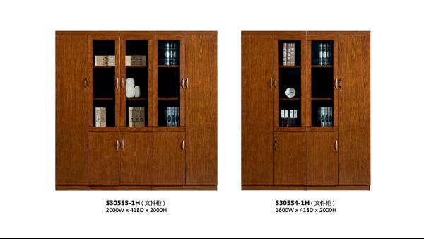 办公室文件柜-定制文件柜