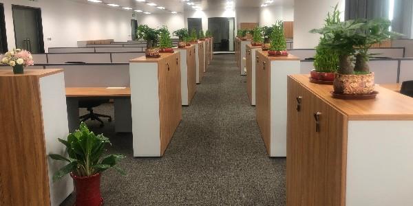 长沙办公家具厂教你保养文件柜的方法